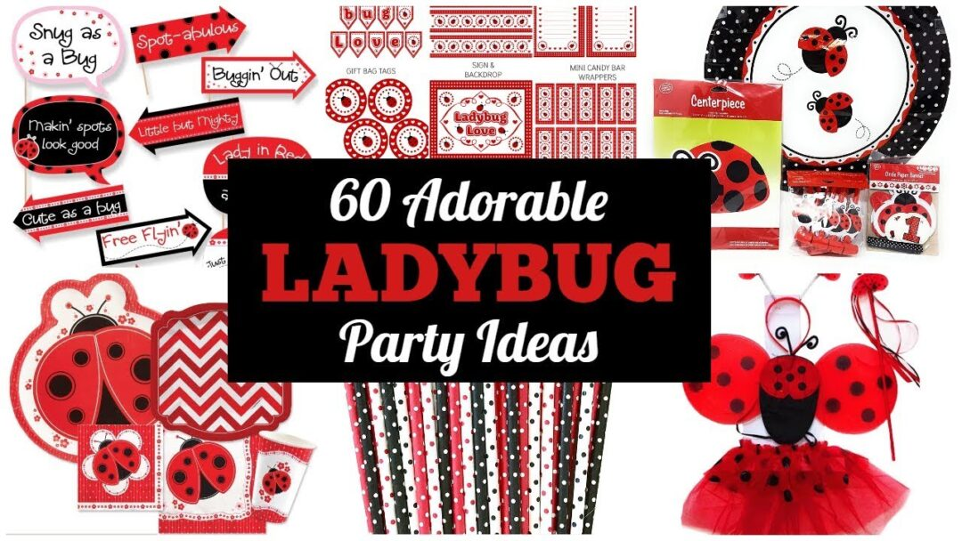 Ladybug Party Ideas & Supplies