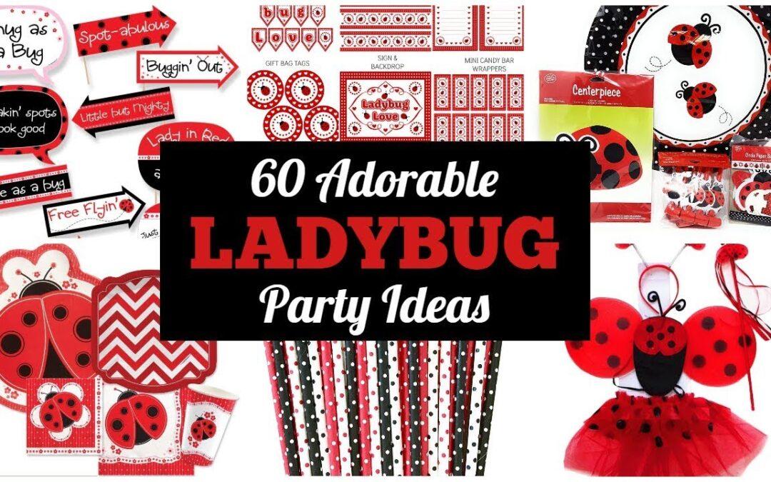 Ladybug Party Ideas & Supplies